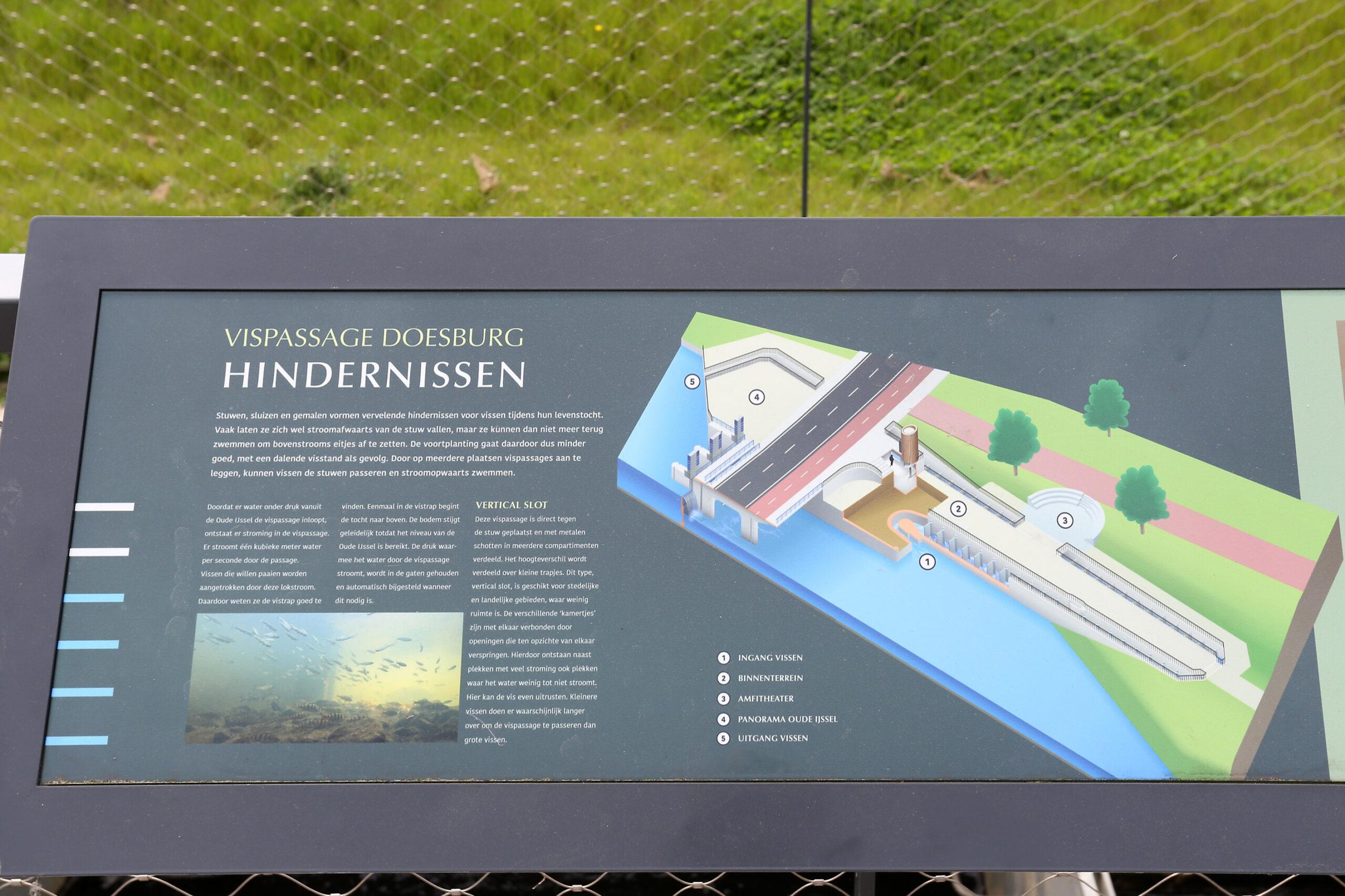HAARST v. DOESBURG Vistrap WS Rijn en IJssel Site JourneeIMG_8997